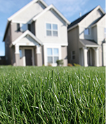 Lawn Care Services: Pest Control, Fertilization and Weed Control, & Fire Ant Control